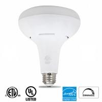 BR-Bulb-LogosBottom-LG